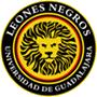 瓜达拉哈拉大学